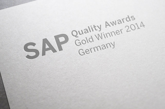Die SAP Ingenieure - SAP Gold-Award